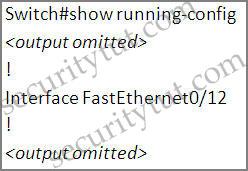 show-running-config.jpg